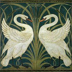 swan wallpaper.