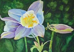 watercolor painting original blue Colorado by TerriRobertsonArt