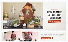 How to make a Tabletop Terrarium :: DIY Tutorial from west elm
