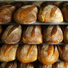 Link Time: The Artisan Bread Movement in America