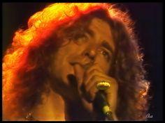 """Robert Plant """"Autumn Glow"""" Photoartist LisaKay Allen/PassionFeast"""