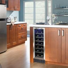 Danby Silhouette 27-Bottle Built-In Wine Cooler-DWC276BLS - The Home Depot