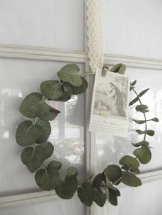 eucalyptus wreath - a single stem of spinning gum is all you need!, eucalyptus wreath - a single stem of spinning gum is all you need! Diy Arts And Crafts, Xmas Crafts, Diy Craft Projects, Xmas Wreaths, Christmas Decorations, Holiday Decor, Christmas Flowers, Fresh Flowers, Dried Flowers