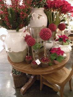 Seasons Of Joy: Christmas—cute small topiaries with small red berries/balls.