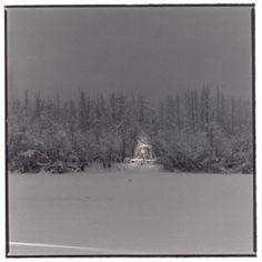 Hiroshi Watanabe Photography-Xmas tree