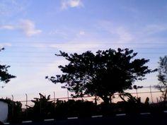 #Evening :3 ahaa