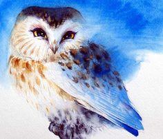 Original Bird Art Blue Art Saw Whet Owl Watercolor