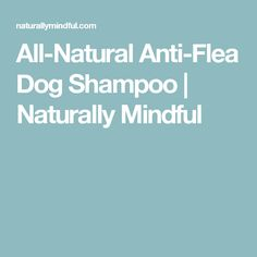 All-Natural Anti-Flea Dog Shampoo | Naturally Mindful