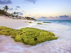National Geographic Traveler Names Bermuda One of World's Best Destinations for 2016