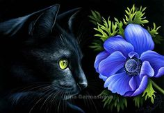 Cats Botanical Blue Anemone Irina Garmashova Cats