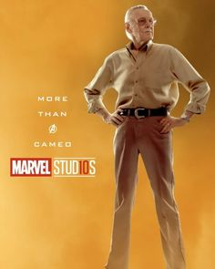 STAN LEE MOVIE WITH SUPERHERO CAMEOS!!!! It would be even better if it were just him trying to close another movie deal, with the heroes wreaking havoc around him