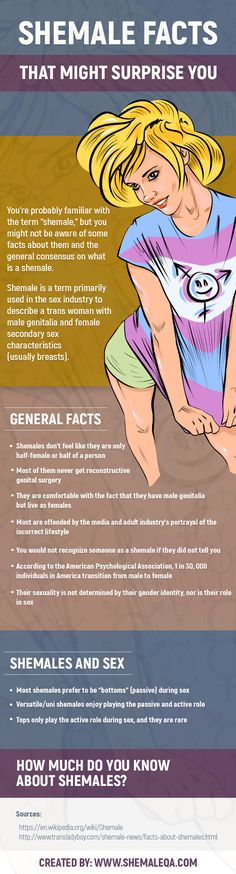 """You're probably familiar with the term """"shemale,"""" but you might not be aware of some facts about them and the general consensus on what is a shemale.  Shemale is a term primarily used in the sex industry to describe a trans woman with male genitalia and female secondary sex characteristics (usually breasts)."""