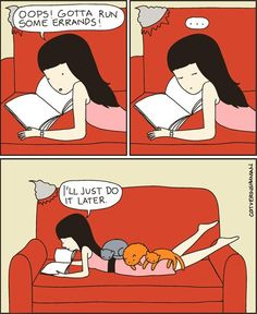 the life and times of a crazy cat lady.