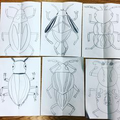 Can't wait to see these symmetrical beetles with color! Third graders learned about symmetrical balance and how to create a perfectly symmetrical drawing. Spring Art Projects, School Art Projects, Middle School Art, Art School, High School, Balance Art, 2nd Grade Art, Atelier D Art, Jr Art