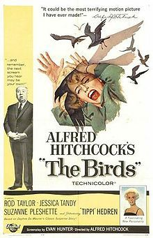 I remember watching The Birds for the first time in the 60's and thinking it was SOOO SCARY!! After watching it, I also kept my eye on the birds around town for several weeks...LOL!!