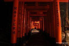 La #photo du jour : Fushimi-Inari de nuit une expérience magique et effrayante ! Adam Khalife #Japan
