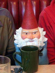 coffee gnome -