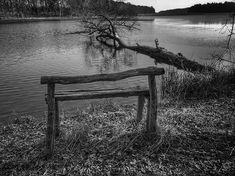 #mobilnytydzien165 #tree_magic #magic_shots_ #beautiful_nature #tv_mist #landscape_captures #loves_trees_rural #mobile_perfection #bnw_greatshots #bnw_life #bnw_planet #bnwpoland #ig_energy_bw  #iphonex #iphoneography #photooftheday #bw_perfect #bnw_perfection #bnw_photography