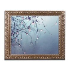 "Trademark Art ""As Time Goes By"" by Beata Czyzowska Young Ornate Framed Photographic Print Size: 16"" H x 20"" W x 0.5"" D"