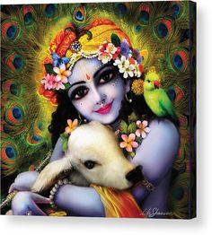 Krishna Gopal Acrylic Print by Lila Shravani. All acrylic prints are professionally printed, packaged, and shipped within 3 - 4 business days and delivered ready-to-hang on your wall. Choose from multiple sizes and mounting options. Hare Krishna, Krishna Leela, Krishna Radha, Krishna Love, Iskcon Krishna, Radha Rani, Durga, Radha Krishna Pictures, Lord Krishna Images