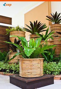 Você sabia que o hortelã, o alecrim e o poejo atuam como repelentes naturais?! Anote dicas para cultivar essas e outras ervas em casa: