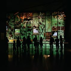Silhouettes in the Hall of Biodiversity, beautifully captured by @jnsilva #InsideAMNH