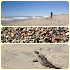 Avon, NC beach, just south of ramp 34 2/20/13. #capehatteras #hatterasisland #obx #offseason