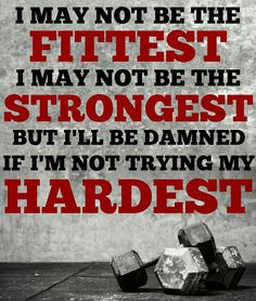 I may not be the fittest, or the strongest.  But I'll be damned if I'm not trying my hardest!