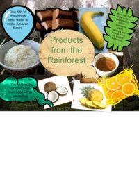 Rainforest products task