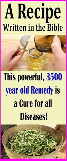 This Powerful, 3,500 Year-Old Remedy Cures All Diseases!!! – (Recipe) Written In The Bible Healthy Lifestyle Tips, Healthy Habits, Healthy Tips, How To Stay Healthy, Healthy Recipes, Healthy Food, Keeping Healthy, Healthy Beauty, Healthy Drinks