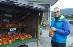 RVing in Japan made easy. Here and there but especially in the countryside, you can encounter Honesty Fruit & Vegie stalls. Camper Rental, Kyushu, Fukuoka, Stalls, Honesty, Make It Simple, Japan, Easy, Food