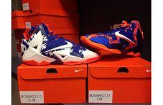38f481eb1348 Florida Gators Receive Custom Nike LeBron XIs
