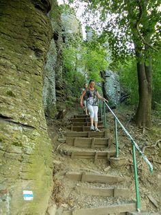Walk In The Woods, Garden Bridge, Outdoor Structures, Places, Bucket, Travel, Viajes, Destinations, Traveling