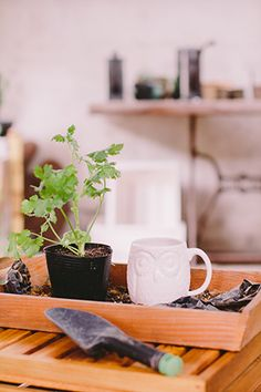 RL Tips: Create an Organized Gardening Station Real Living Philippines