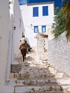 Donkey Transport. Hydra, Greece