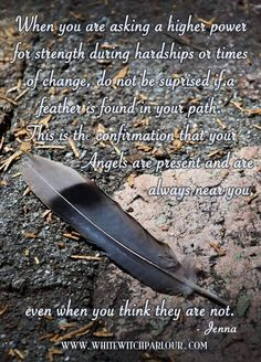 finding a feather in your path. angels are present and are always near you, even when you think they are not. Feather Signs, Feather Quotes, Feather Tattoos, Art Tattoos, Affirmations, Native American Wisdom, Spirit Guides, Book Of Shadows, Magick