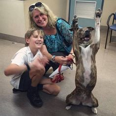r/aww: Shelter Dog CANNOT Contain Her Excitement About Getting Adopted by /u/Grand_Steer (38 mins. old) http://ift.tt/2cdWr7w
