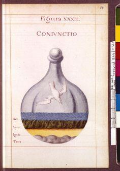 Figura XXXII - Coniunctio - Sapientia veterum philosophorum, sive doctrina eorumdem de summa et universali medicina 40 hierogliphis explicata