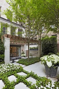 Pergola, patio, landscaping   Edmund Hollander Landscape Architect Design P.C. - 2012 Award Winning Projects - City Courtyard