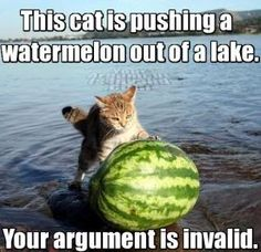 Cat and Watermelon, your argument is invalid