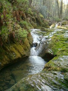 Ninglinspo Ardennes, Fish Ponds, Deep Blue, Rivers, Skiing, Om, Places To Go, Waterfall, Beautiful Places