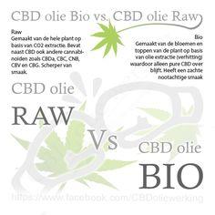 Bio CBD olie word gemaakt van de bloemen en toppen van de plant op basis van olie extractie (verhitting) waardoor alleen pure CBD over blijft. Heeft een zachte nootachtige smaak