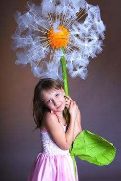 Giant dandelion.
