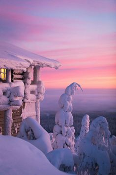 The snow covered trees are amazing at Hotel Iso-Syote - Visiting Finland in Winter: Top 15 Winter Activities in Finland Winter Szenen, Winter Magic, Winter Travel, Winter Sunset, Snow Travel, Winterguard, Beautiful World, Beautiful Places, Snow Covered Trees