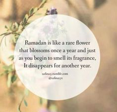 45+ Ramadan Quotes and Verses from Quran in English