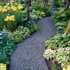 Gravel Path with hostas