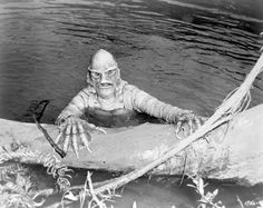 """Creature from the Black Lagoon"" [Wakulla Springs]"