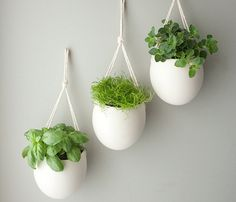 Set of 3 Rope Porcelain Planters