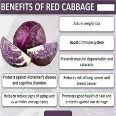 Secret Health Remedies 9 Impressive Benefits of Red Cabbage Benefits Of Organic Food, Coconut Benefits, Juicing Benefits, Health Benefits, Nutrition Tips, Health And Nutrition, Email Format, Healthy Tips, Healthy Eating
