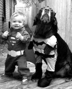 Cute Super Heroes~This little guy is absolutely adorable, but THIS DOG!!!!...he must be a method actor, 'cause he's totally feeling it!